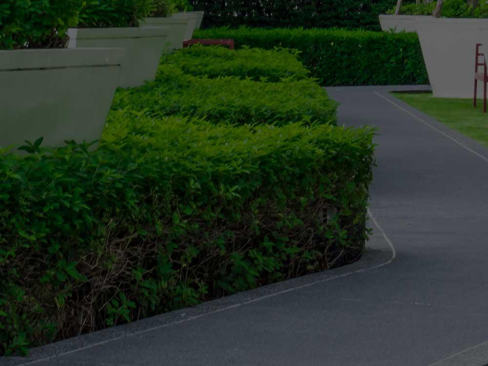 Saylorsburg Commercial Landscaping