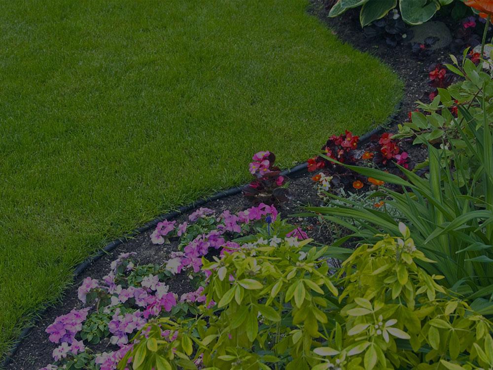 Saylorsburg Garden Design