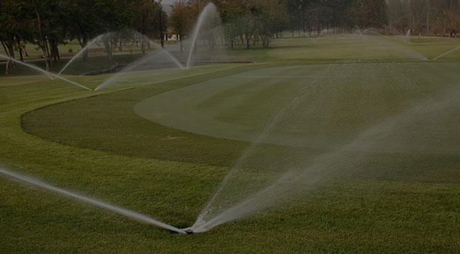 Brodheadsville Irrigation